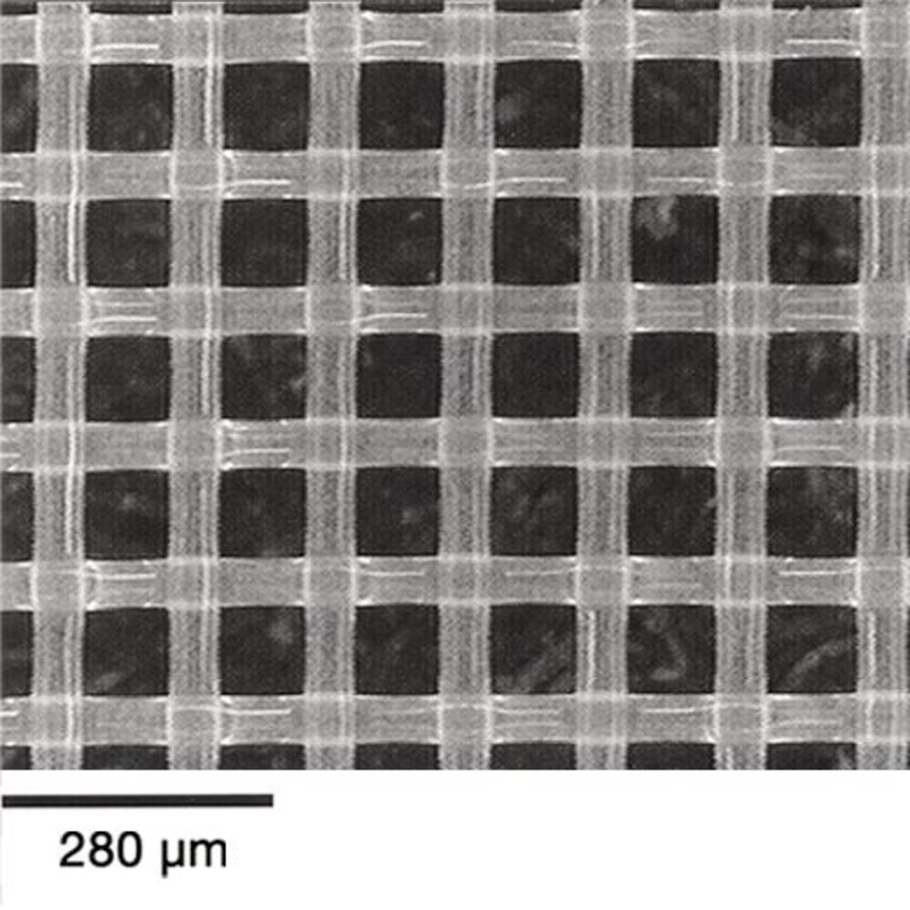 Mesh filter Nylon Circular filters, 41 µm, Diameter: 90 mm